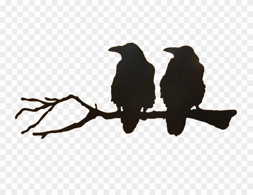 Crowonbranch clipart png free Png Freeuse Download Ravens Silhouette At Getdrawings - Crows On A ... png free