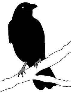 Crowonbranch clipart picture black and white 151 Best ravens and crows images in 2018 | Crows ravens, Drawings ... picture black and white