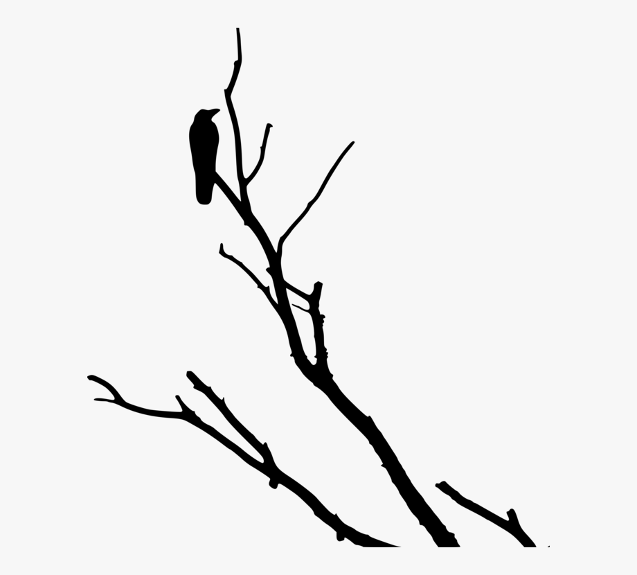 Crowonbranch clipart banner library library Crow Family Tree Common Raven Branch - Black Crow In Tree #128974 ... banner library library