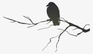 Crowonbranch clipart clip download Raven Silhouette PNG, Free HD Raven Silhouette Transparent Image ... clip download
