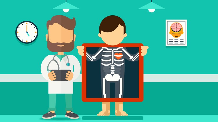 Ct exam clipart clip freeuse Introduction to Medical Imaging | Udemy clip freeuse