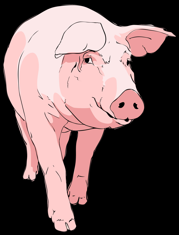 Mini pig pumpkin clipart royalty free stock nice weekend pig - Google zoeken | Piggys | Pinterest | Nice weekend ... royalty free stock