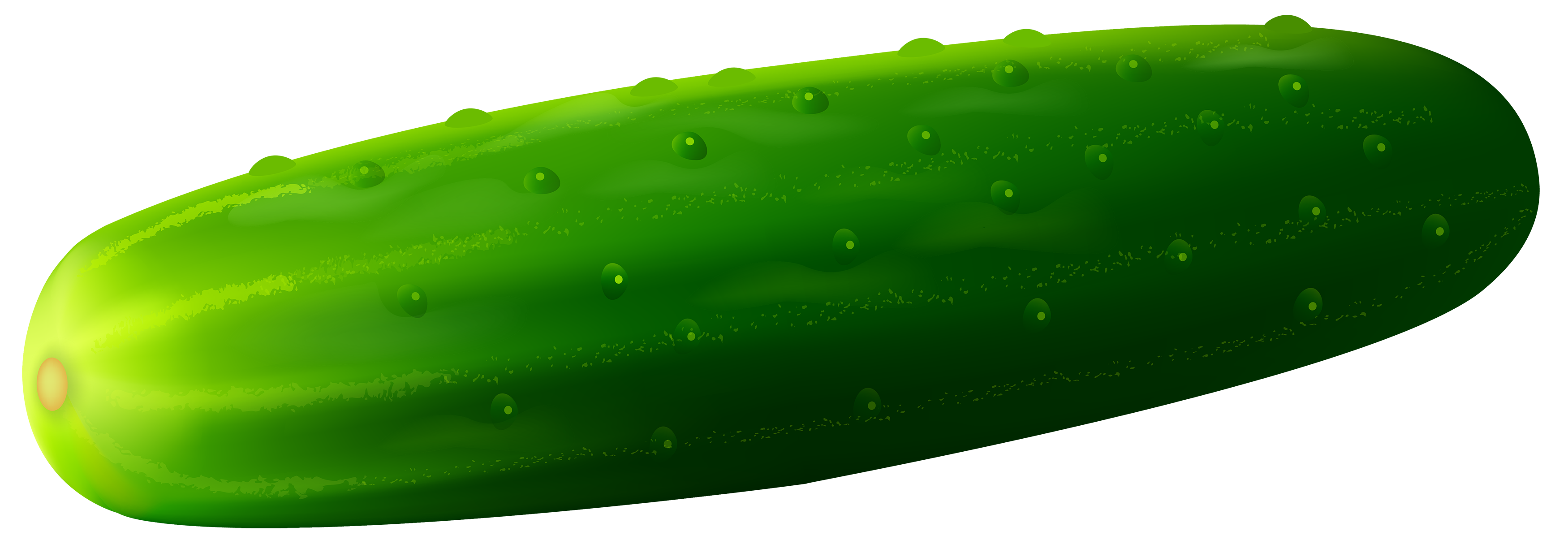 Cucumber clipart picture library library Cucumber PNG Clipart - Best WEB Clipart picture library library