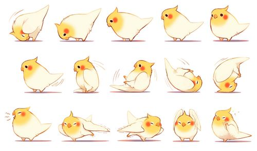 Cute animals taking baths and showers pinterest clipart clipart freeuse stock bird, cute, and anime image | Art | Bird drawings, Cute ... clipart freeuse stock