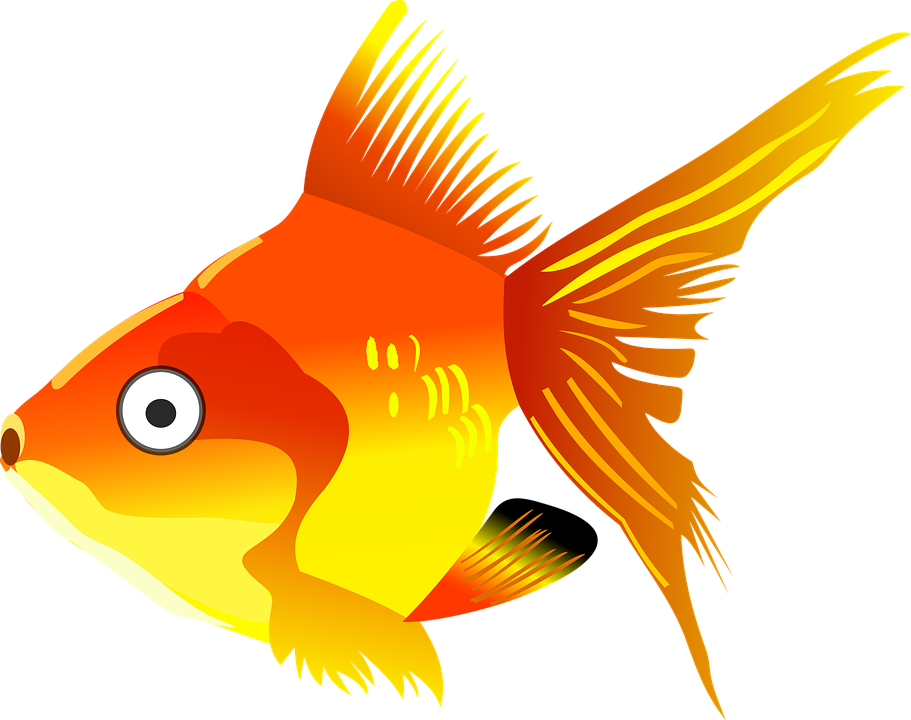 Cute clipart fish banner transparent Cartoon Cute Fish#4416082 - Shop of Clipart Library banner transparent