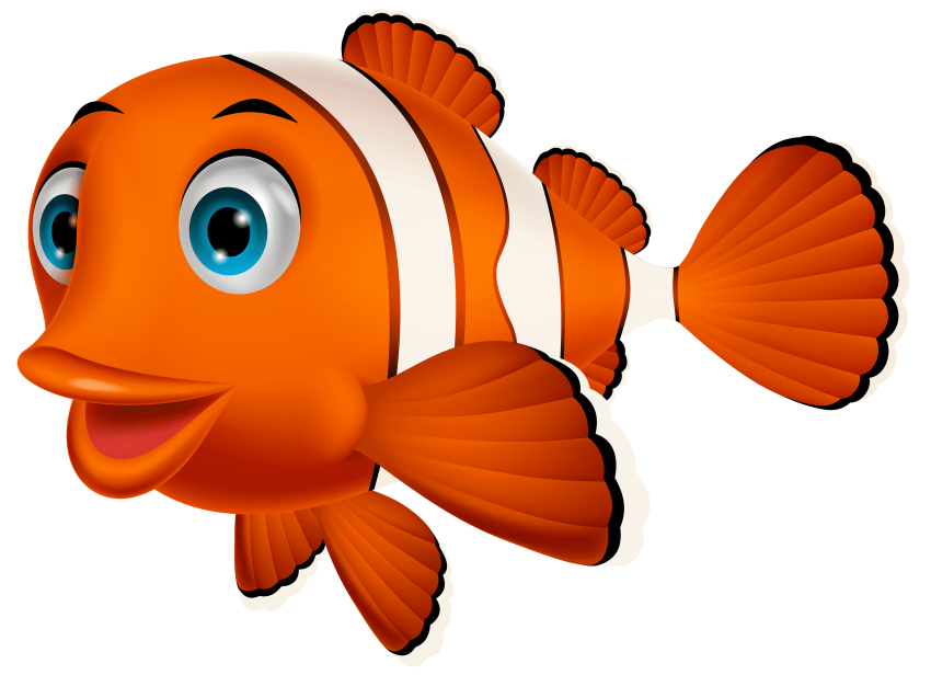 Cute clown fish clipart. Png free images toppng