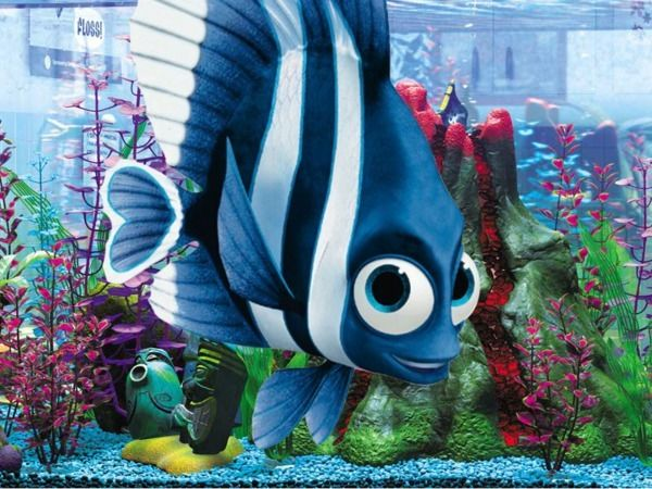 Cute finding nemo characters clipart flo png transparent stock Deb/Flo from Finding Nemo | Fav Characters from Movies | Disney ... png transparent stock