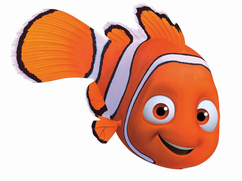 Cute finding nemo characters clipart flo clip art freeuse Quiz: Which Finding Nemo Character Are You? | Love | Finding nemo ... clip art freeuse