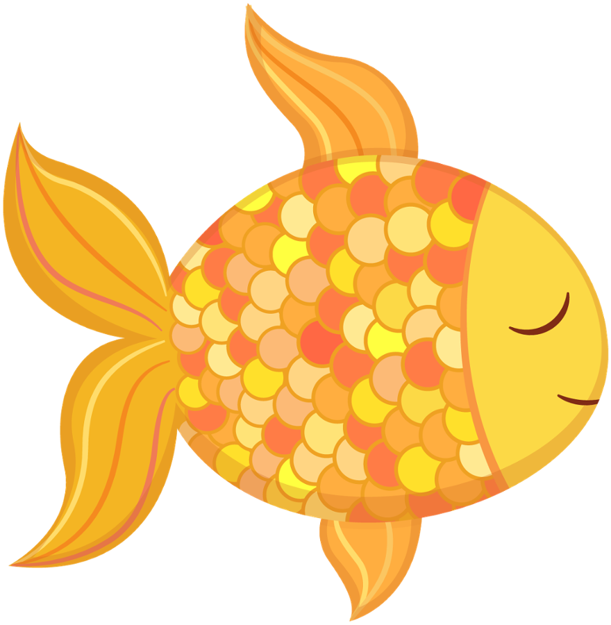 Cute fish clipart png.  ocean safari c