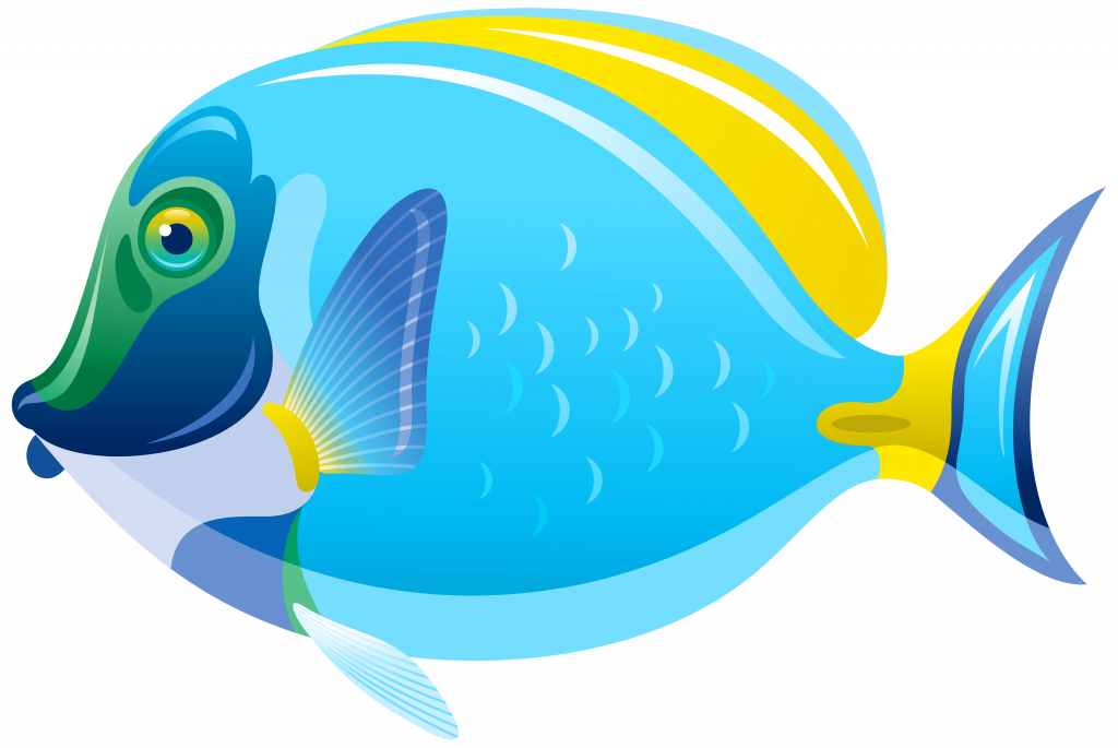 Fish clipart no background png stock Fish Clip Art For Kids - Alternative Clipart Design • png stock