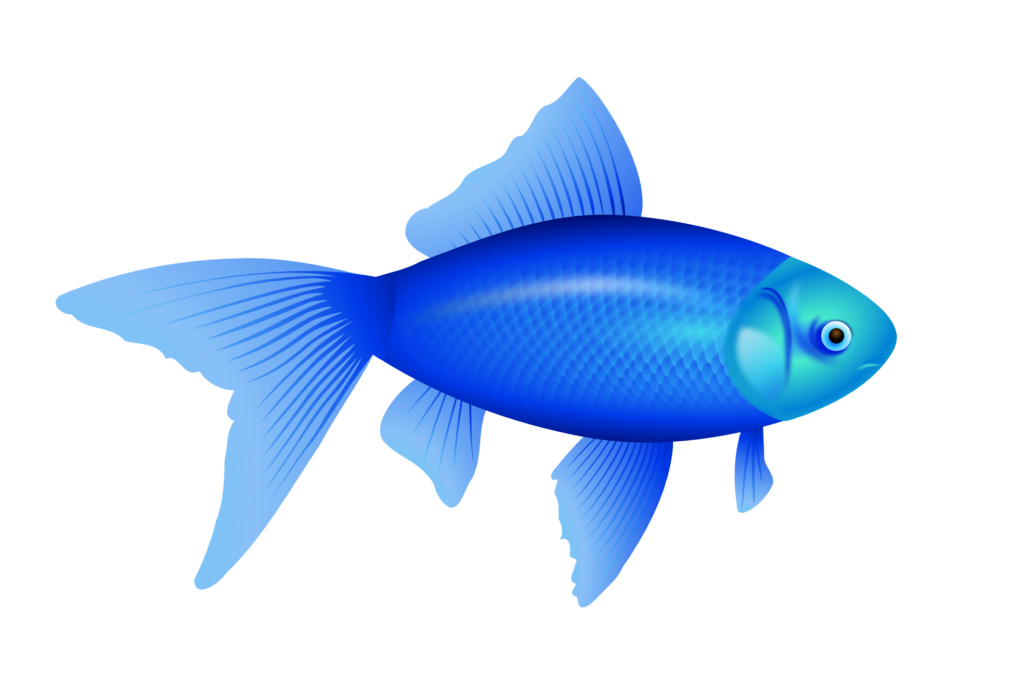 Cute fish clipart no background clip library stock 28+ Collection of Fish Clipart Transparent Background | High quality ... clip library stock