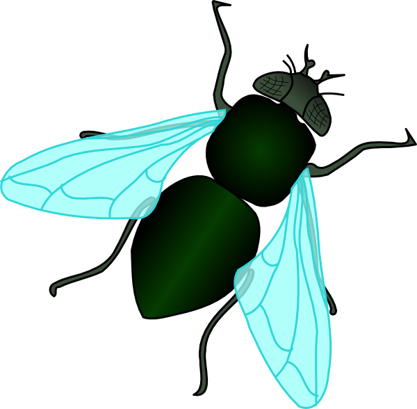 Cute house fly clipart. Green clip art at