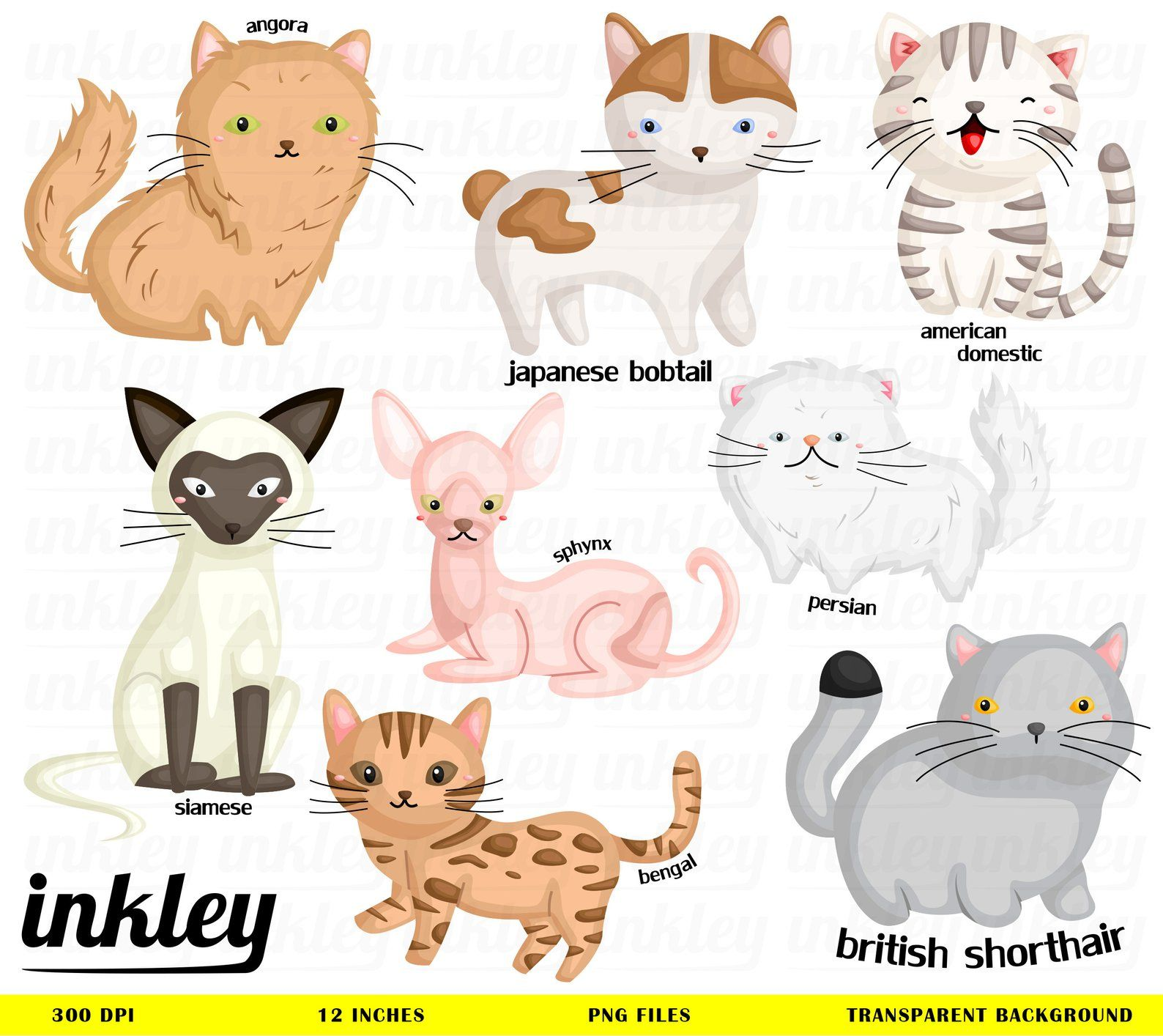 Cute kid dressed like a cat clipart svg freeuse library Cute Cats Clipart, Cute Cats Clip Art, Cute Cats Png, Cat ... svg freeuse library