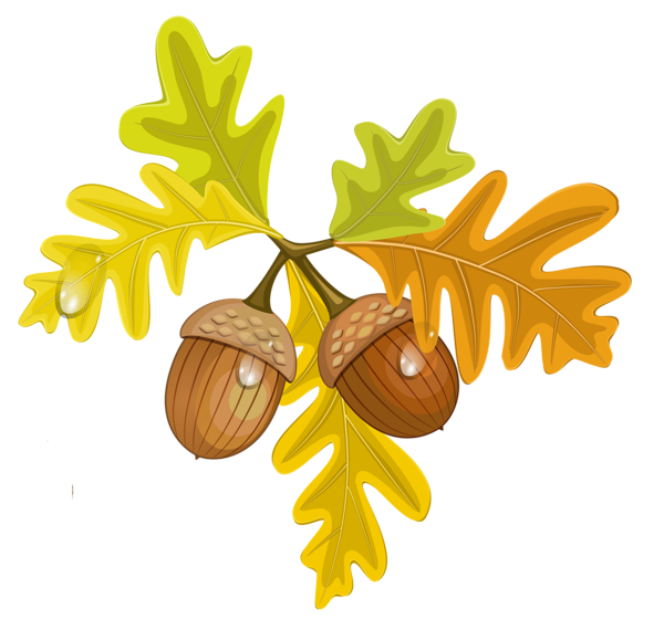 Cute thanksgiving squirrel nut clipart vector transparent Harvest clipart acorn leaf ~ Frames ~ Illustrations ~ HD images ... vector transparent