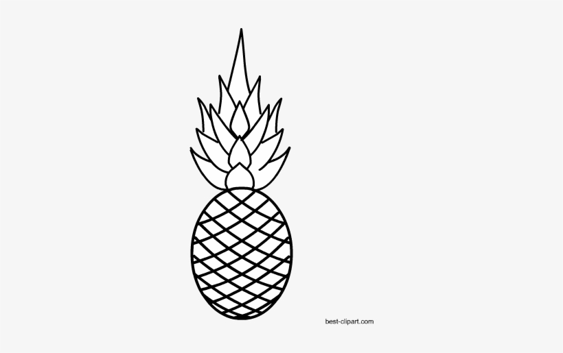 Cute pineapple camera clipart black and white clip black and white Black And White Pineapple Image Free - Fruits Black & White ... clip black and white