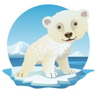 Cute polar bear on ice clipart png transparent library Cute Polar Bear Baby on Ice Floe stock vectors - 365PSD.com png transparent library