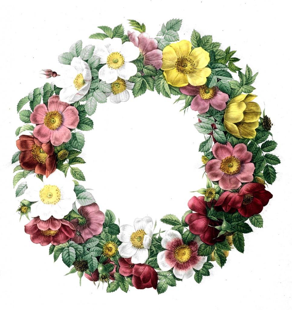 Cute primtive flower cliparts clip transparent stock 50 Favorite Free Vintage Flower Images! - The Graphics Fairy clip transparent stock