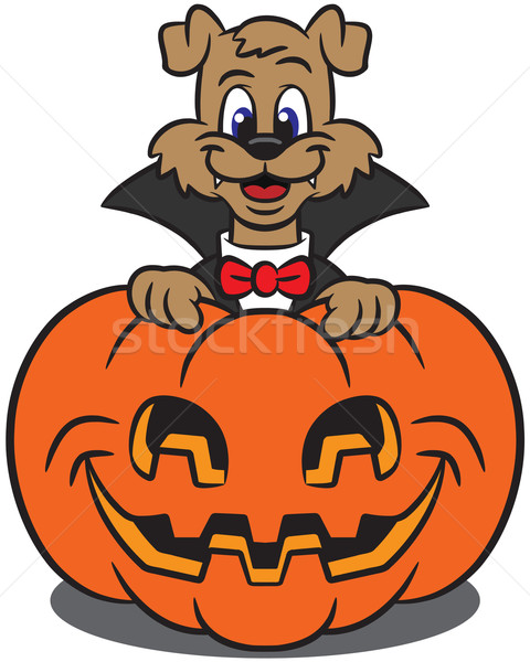 Cute pumpkin character clipart png black and white Cute Dog In A Vampire Costume With Pumpkin vector illustration ... png black and white