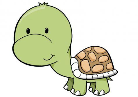 Cute tortoise clipart jpg freeuse Free Shy Turtle Cliparts, Download Free Clip Art, Free Clip ... jpg freeuse
