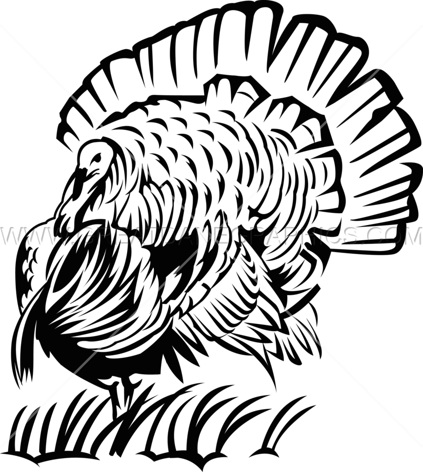 Turkey Head Drawing at GetDrawings.com | Free for personal use ... banner free download