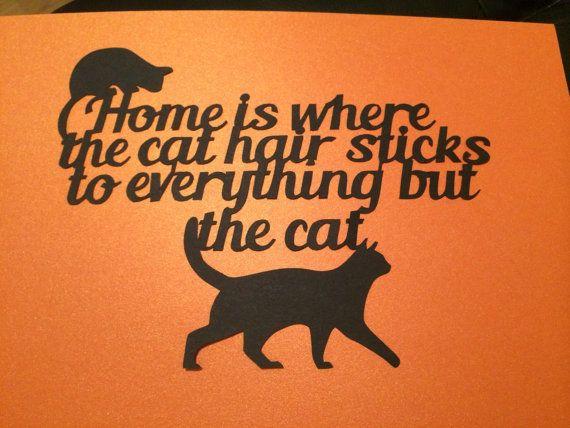 Cutting cat s hair clipart