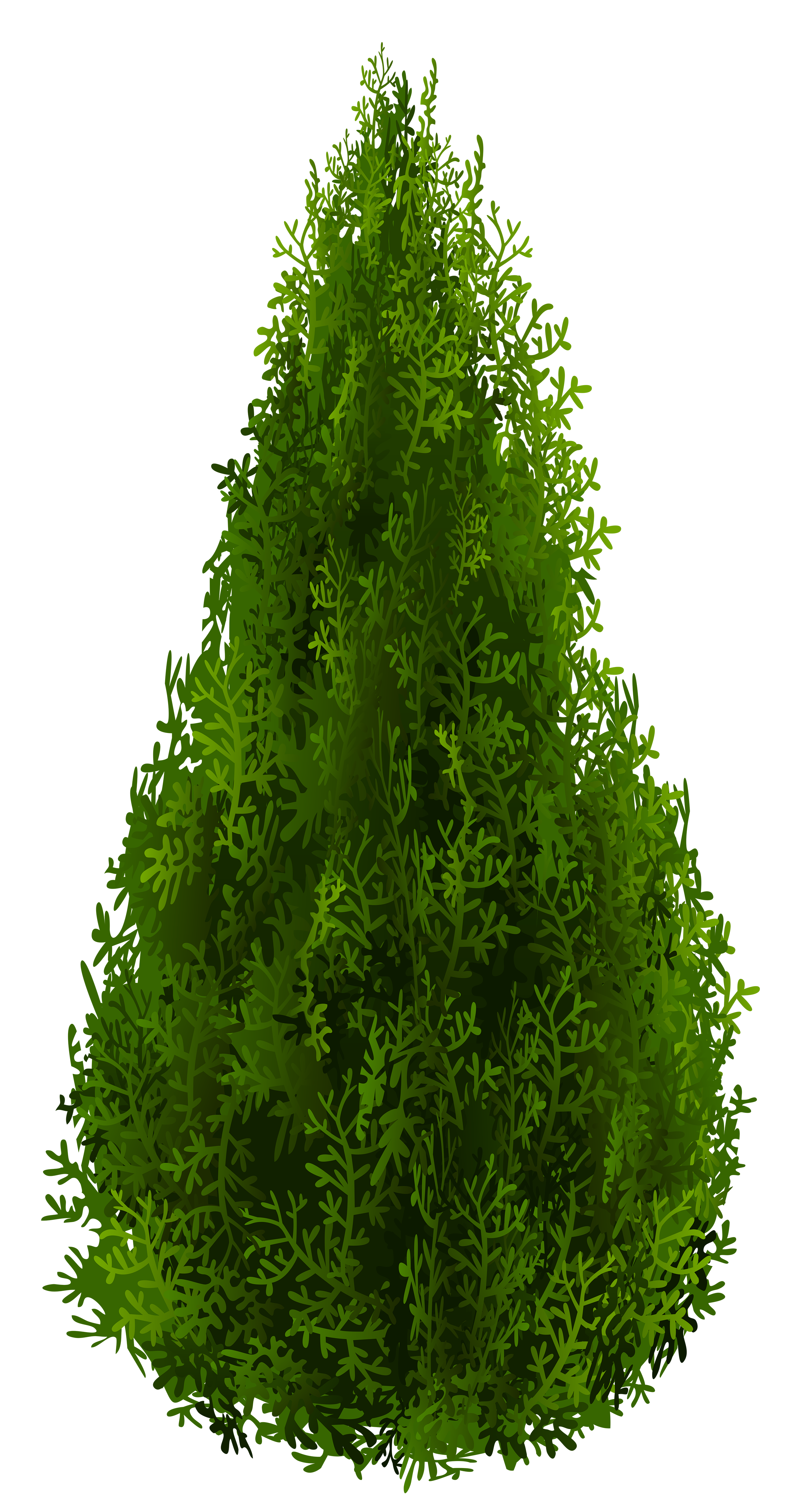 Cypress tree clipart clip art royalty free download Cypress PNG Clipart Picture | Gallery Yopriceville - High-Quality ... clip art royalty free download