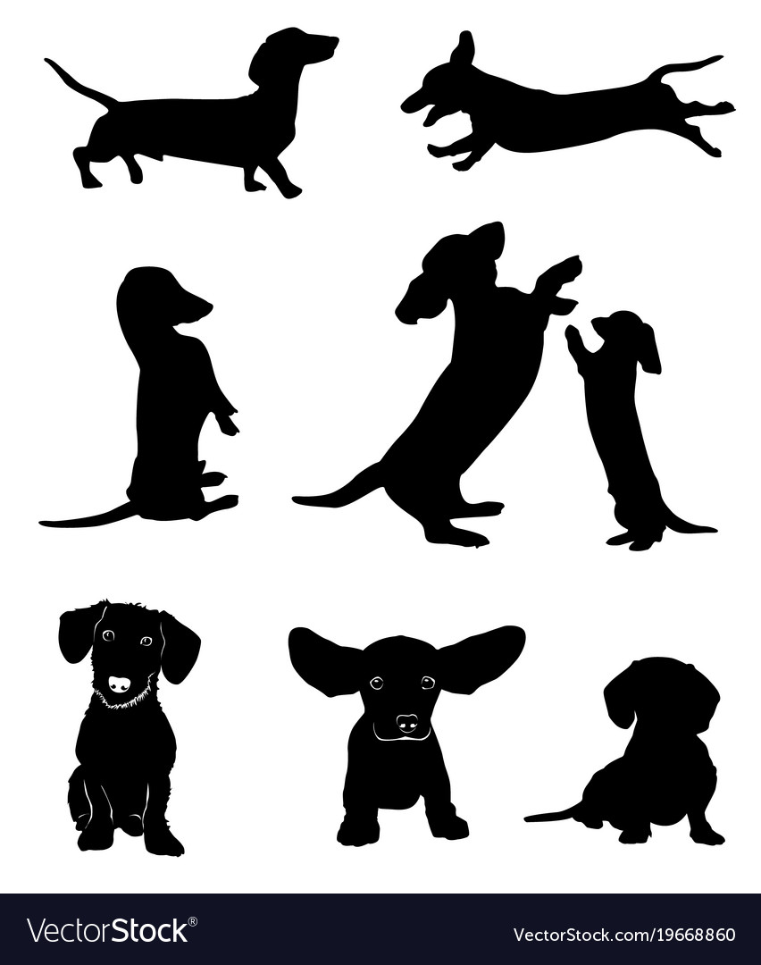 Dachshund silhouette clipart clip art transparent download Silhouettes of dachshunds clip art transparent download