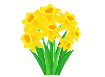 Daffodil clipart image royalty free Search Results for daffodil - Clip Art - Pictures - Graphics ... image royalty free