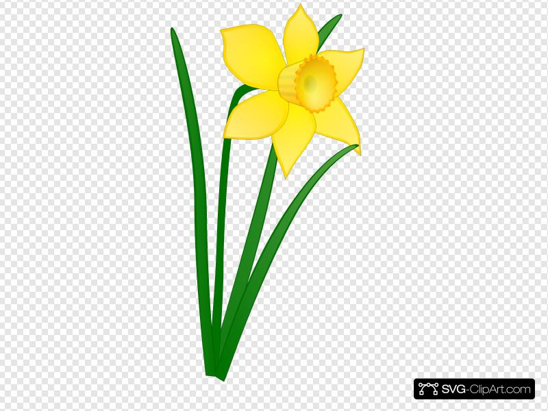 Daffocil clipart clip art transparent stock Daffodil Clip art, Icon and SVG - SVG Clipart clip art transparent stock