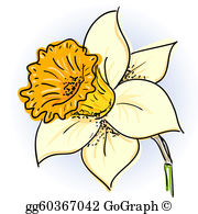 Daffodils clipart vector transparent download Daffodil Clip Art - Royalty Free - GoGraph vector transparent download