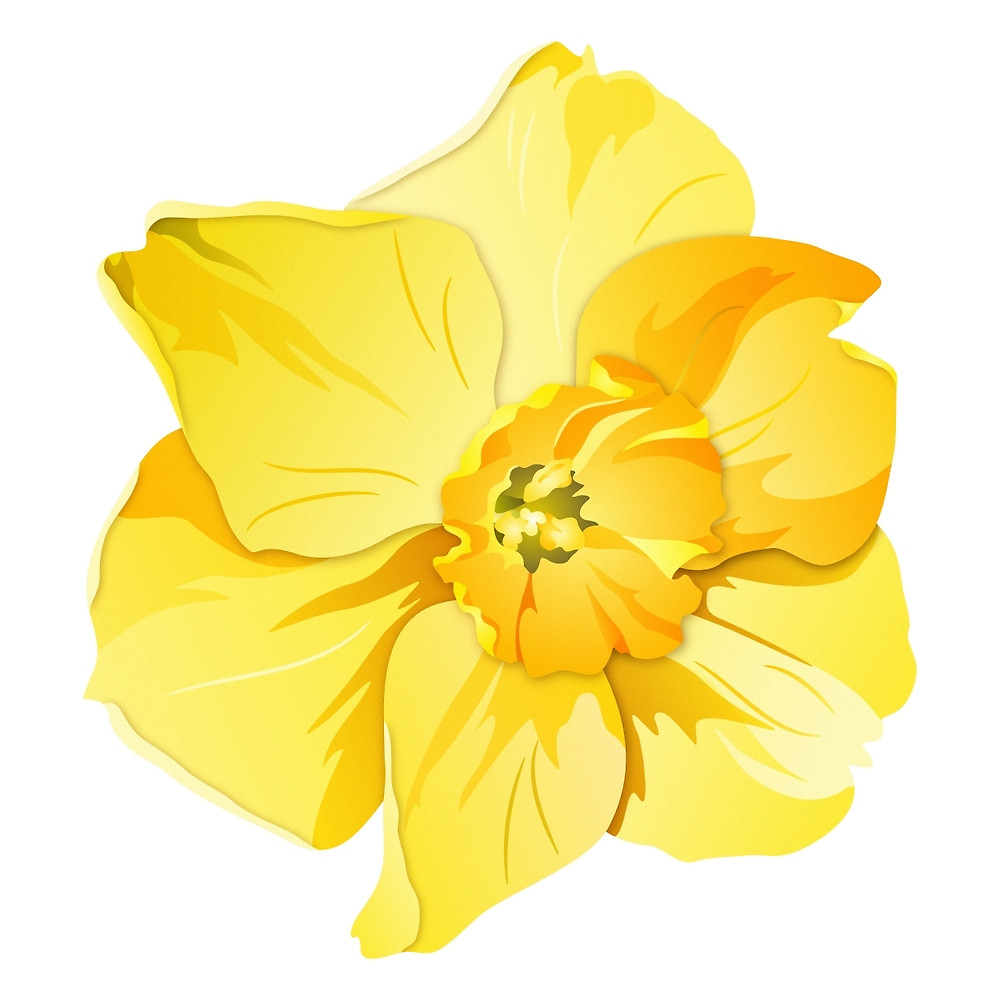 Yellow spring graphic by. Daffodil graphics