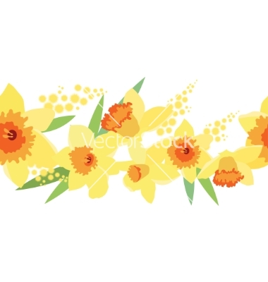 Daffodil graphics. Pattern vector by nurrka