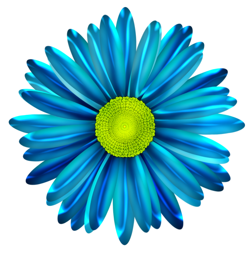 Daisy flower clipart picture Pin by Karen Eldridge on flowers | Pinterest | Flower clipart, Blue ... picture