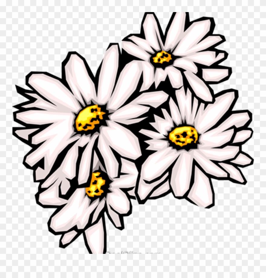 Daisies clipart banner free Daisies Clip Art Daisies Clipart Daisies Royalty Free ... banner free