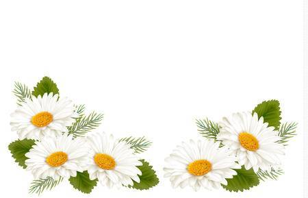 Daisy border clipart image freeuse download Daisy border clipart 3 » Clipart Portal image freeuse download