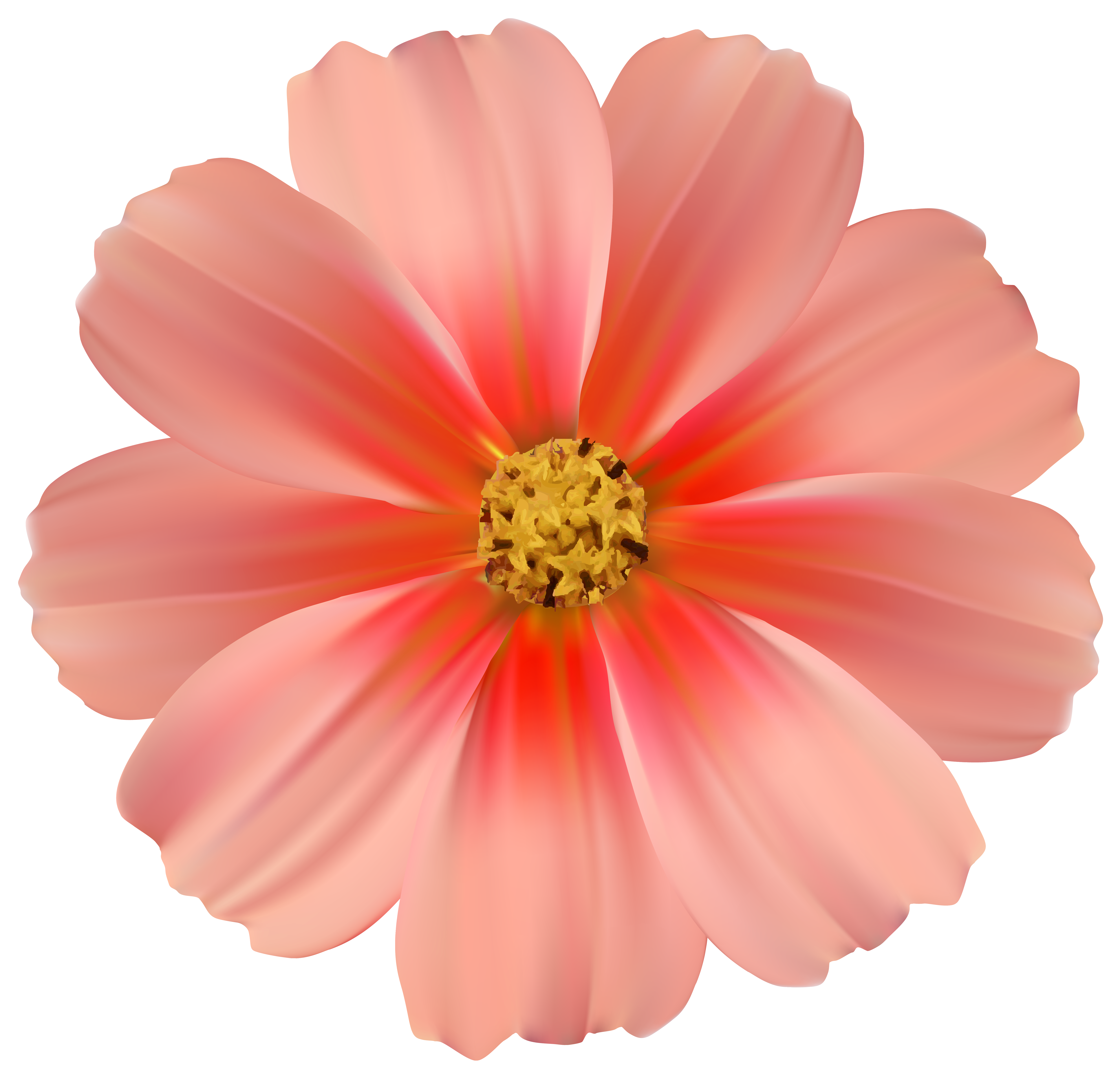Daisy flower clipart png graphic transparent download Orange Daisy PNG Clipart Image | Gallery Yopriceville - High ... graphic transparent download