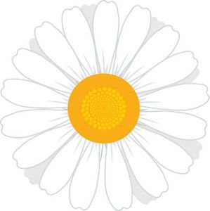 Daisy images clipart vector freeuse stock White Flowers Clip Art | Daisy Clip Art Images Daisy Stock ... vector freeuse stock
