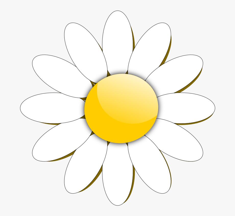Daisy images clipart jpg library stock Daisy Clipart Flower Head - Daisy Flower Images Clipart ... jpg library stock