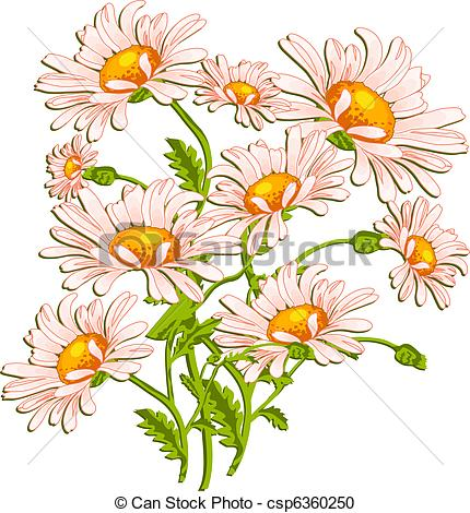 Daisy s clipart art picture free stock Vector Clipart of Bouquet of ox-eye daisys on white, summer ... picture free stock