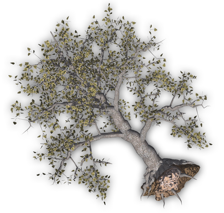 Damaged tree clipart black and white download 28+ Collection of Uprooted Tree Clipart   High quality, free ... black and white download
