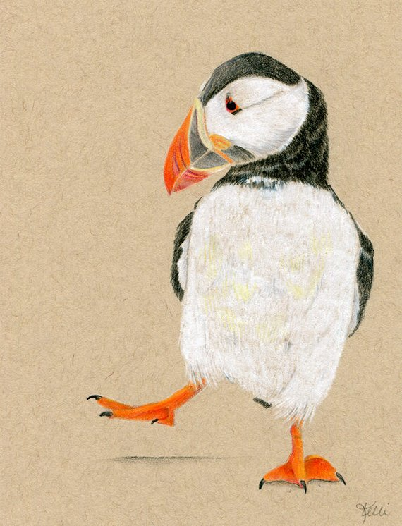 Dancing puffin clipart clip free stock Puffin Dance Original Colored Pencil Drawing Illustration ... clip free stock