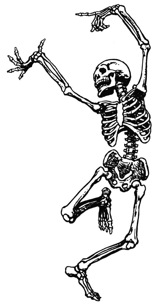 Dancing skeleton clipart image black and white Phil Wade\'s Course Skeleton   school   Skeleton tattoos ... image black and white