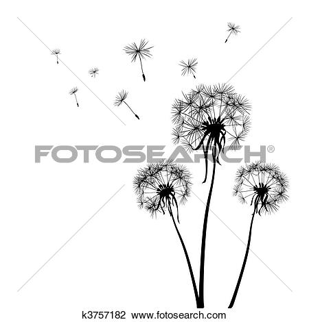 Dandelion clip art pictures vector freeuse stock Clip Art of Abstract dandelion flowers k9021127 - Search Clipart ... vector freeuse stock