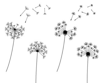 Dandelion clip art pictures graphic black and white download Dandelion Clip Art & Dandelion Clip Art Clip Art Images ... graphic black and white download