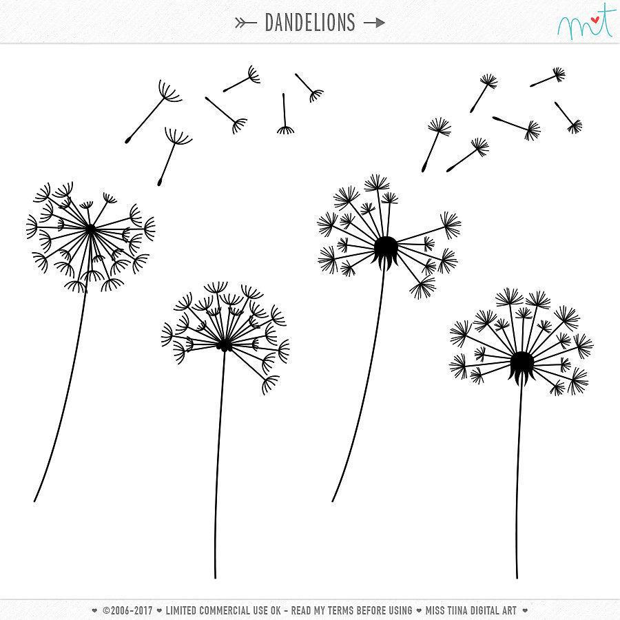 Dandelion clip art pictures vector transparent stock Dandelion clip art | Etsy vector transparent stock