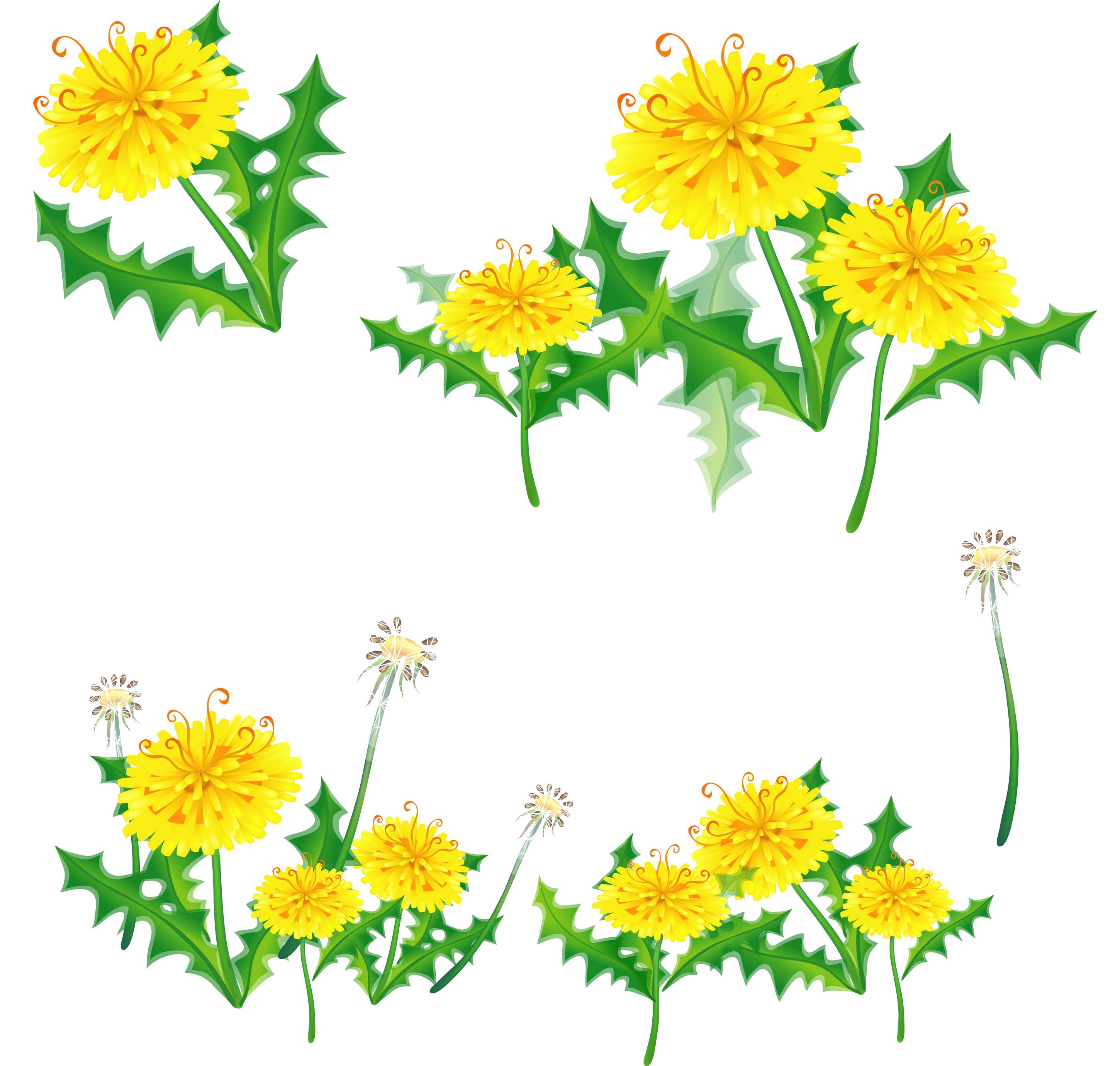 Dandelion flower clipart black and white stock Dandelion PNG images free download black and white stock