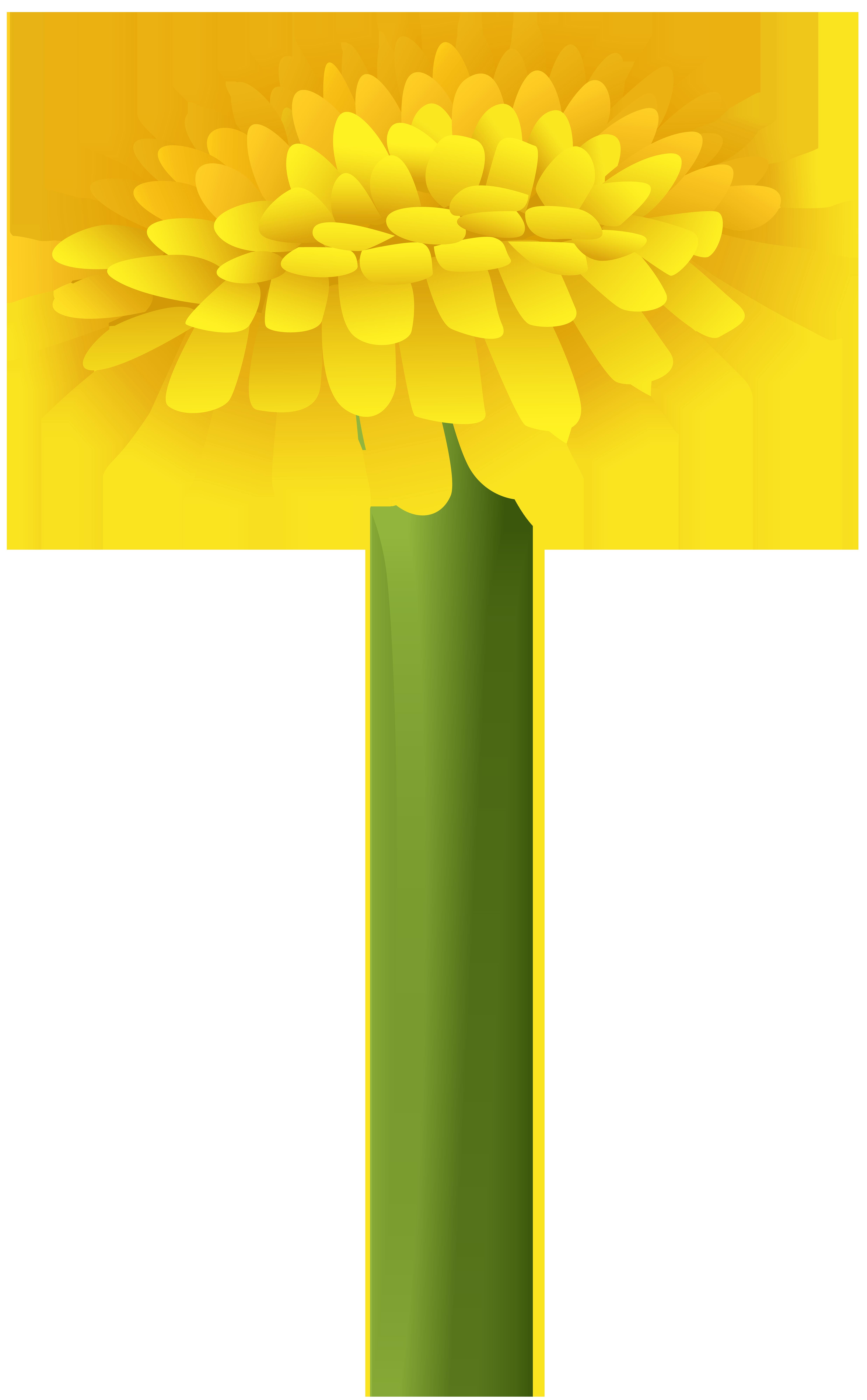 Marigold flower clipart clip art freeuse stock Dandelion PNG Clip Art Image | Gallery Yopriceville - High-Quality ... clip art freeuse stock