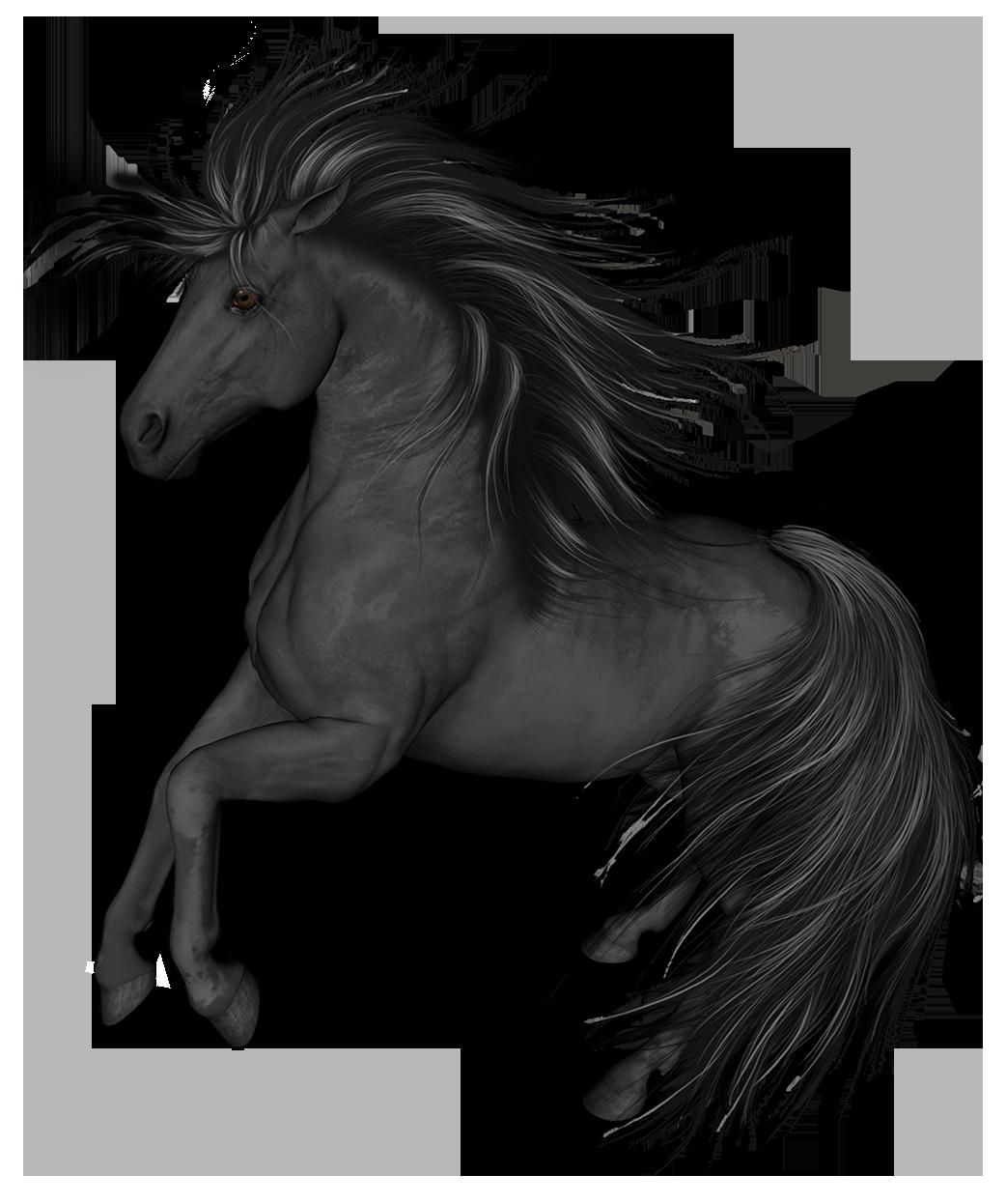 Dark house clipart clip art royalty free download Black Horse PNG Clip Art - Best WEB Clipart clip art royalty free download