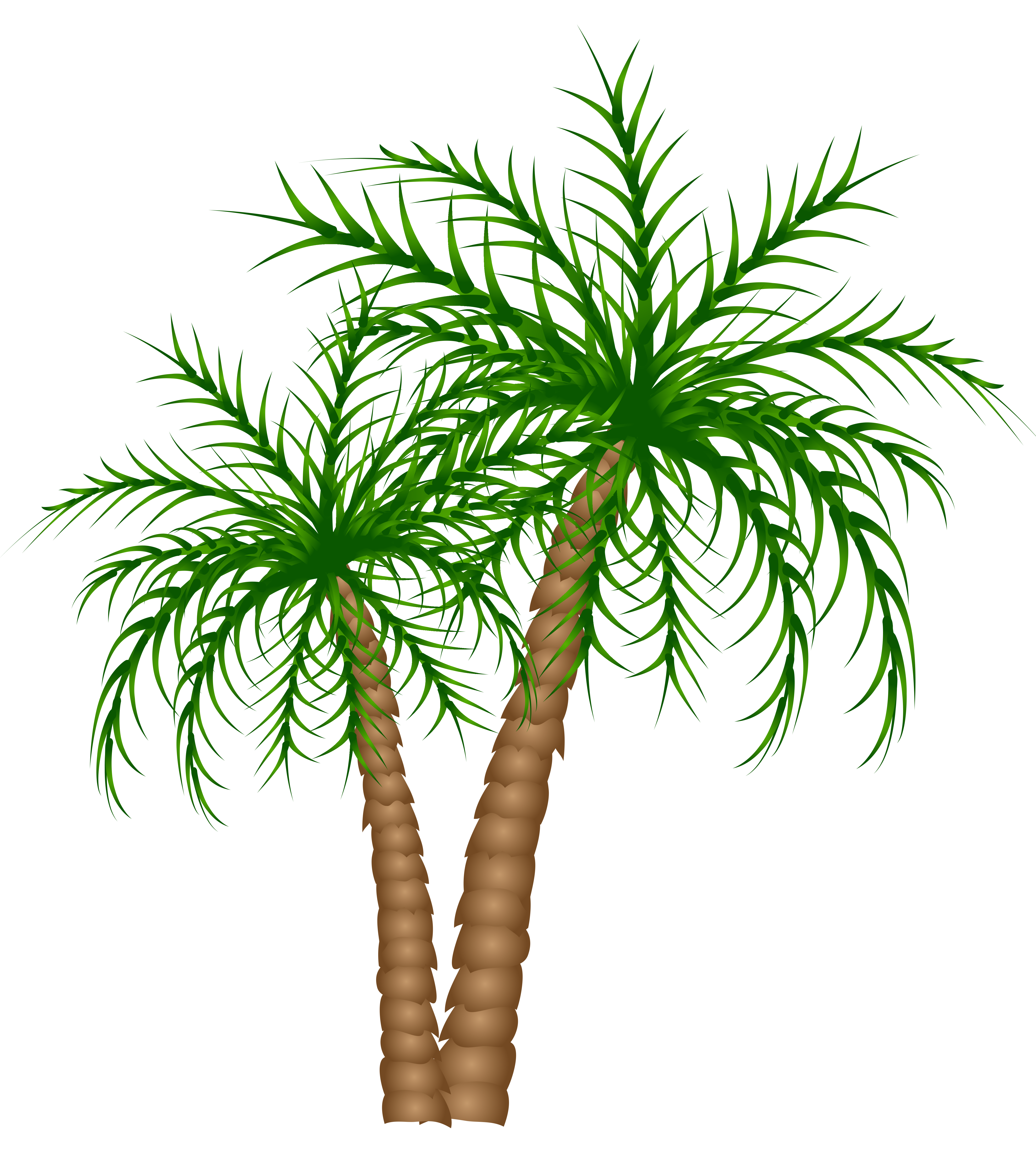 Date palm tree clipart graphic library library Palm Trees PNG Clipart Picture | Gallery Yopriceville - High ... graphic library library