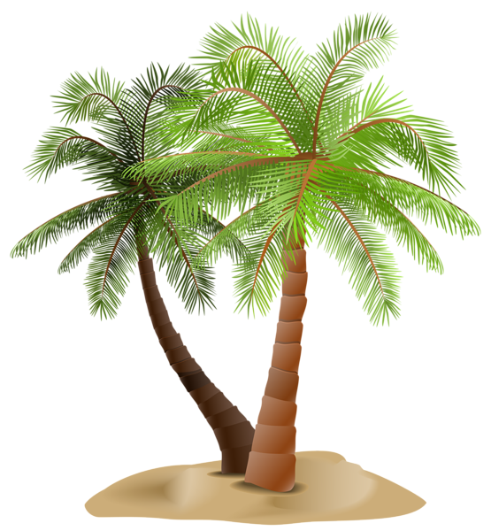 Date palm tree clipart clip art royalty free Gallery - Trees PNG Clipart clip art royalty free